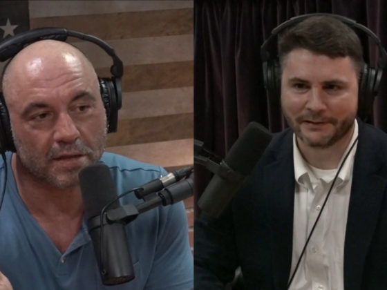 James Lindsay and Joe Rogan Discuss Critical Social Justice 1