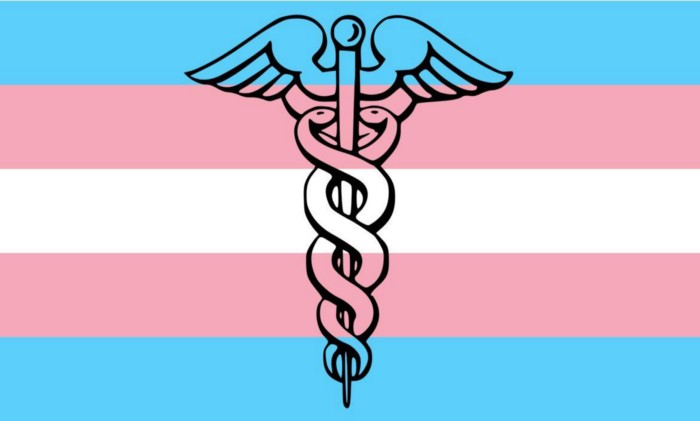 At What Cost? Trans Healthcare, Manipulated Data, and Self-Appointed Saviors
